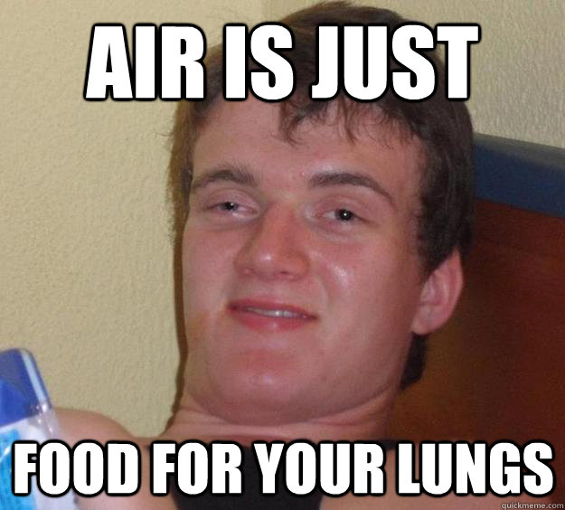 air is just food for your lungs  10 Guy