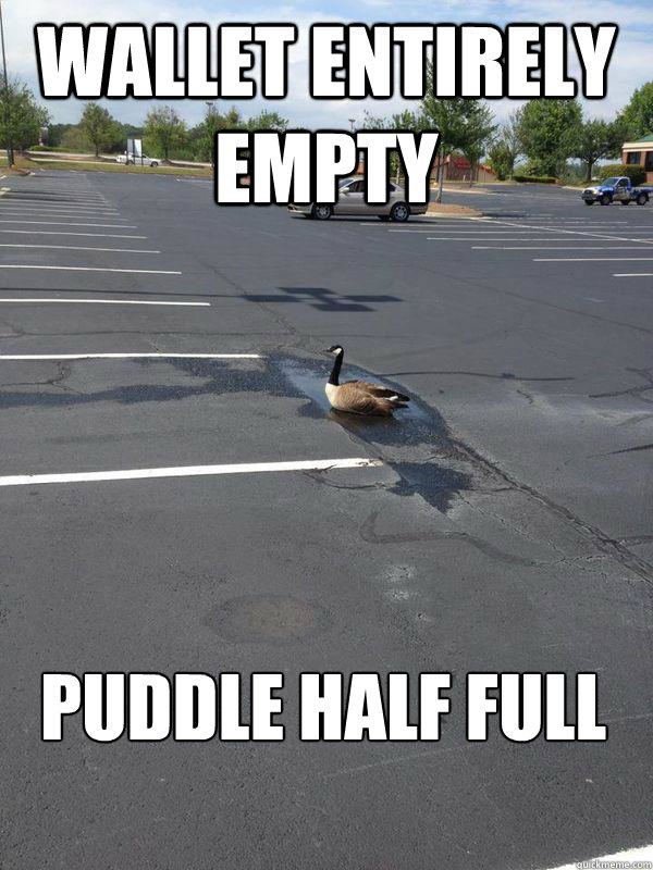 Wallet Entirely Empty Puddle Half FUll - Wallet Entirely Empty Puddle Half FUll  Optimistic Goose