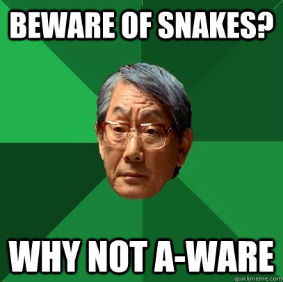Beware of Snakes? Why not a-ware - Beware of Snakes? Why not a-ware  High Expectations Asian Father