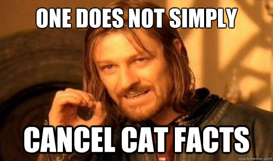 One Does Not Simply Cancel Cat Facts - One Does Not Simply Cancel Cat Facts  Boromir