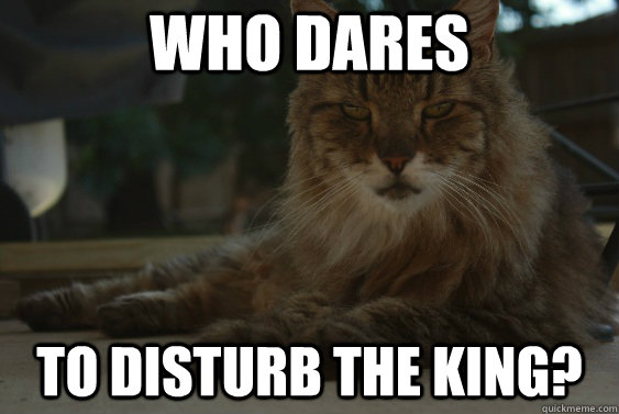 Who dares to disturb the King? - Who dares to disturb the King?  King of the Backyard