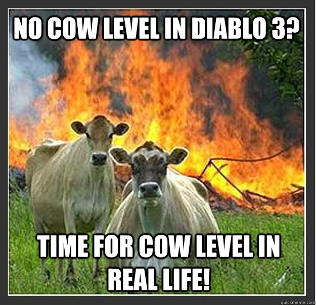 No Cow level in diablo 3? TIME FOR cow level in REAL LIFE! - No Cow level in diablo 3? TIME FOR cow level in REAL LIFE!  Evil cows