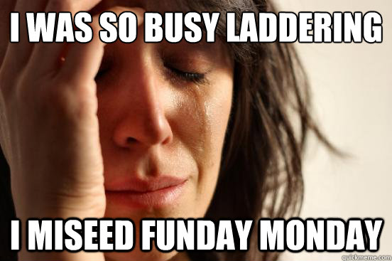I was so busy laddering I miseed funday monday - I was so busy laddering I miseed funday monday  First World Problems