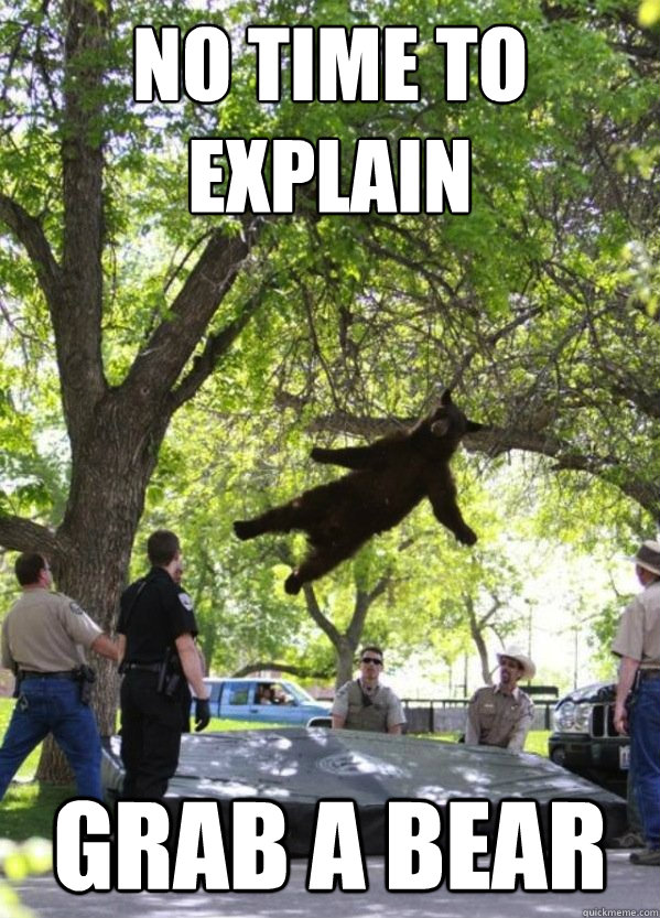 No Time To Explain Grab a Bear  i am a falling bear