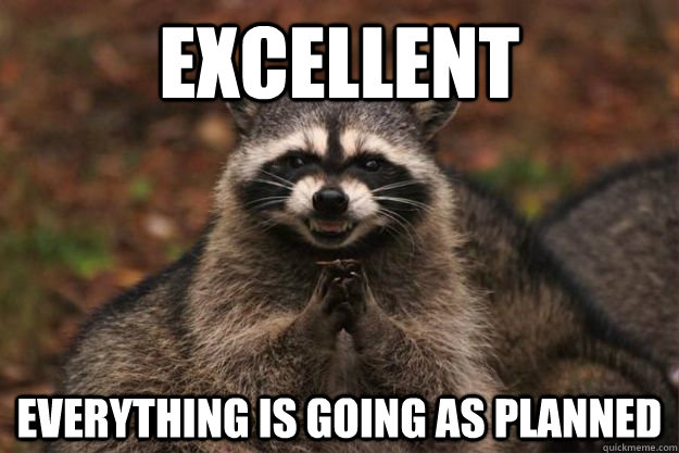 Excellent everything is going as planned - Excellent everything is going as planned  Evil Plotting Raccoon
