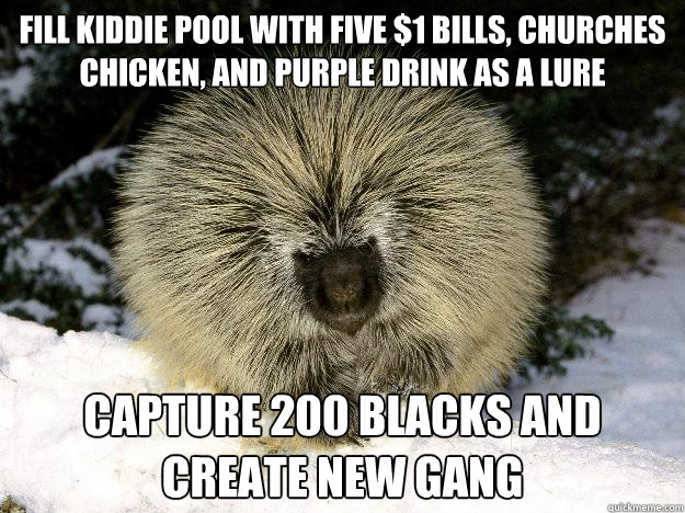Fill kiddie pool with five $1 bills, churches chicken, and purple drink as a lure  Capture 200 blacks and create new gang