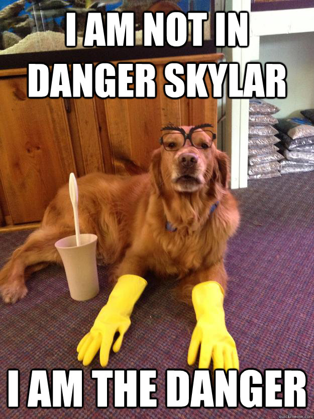 I am not in danger Skylar I am the danger - I am not in danger Skylar I am the danger  Misc