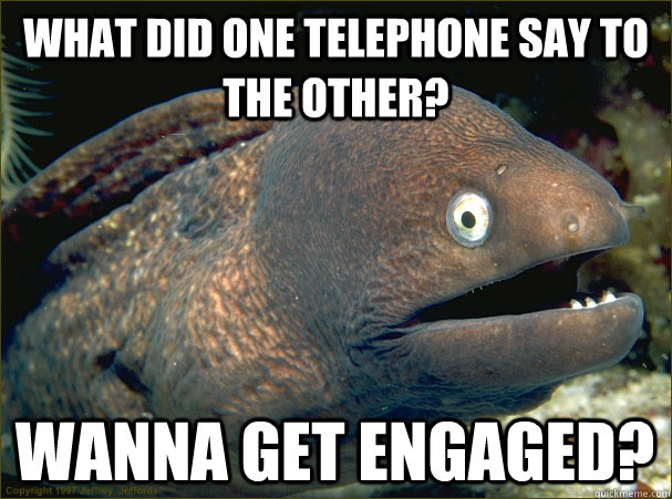 what did one telephone say to the other? Wanna get engaged?  Bad Joke Eel