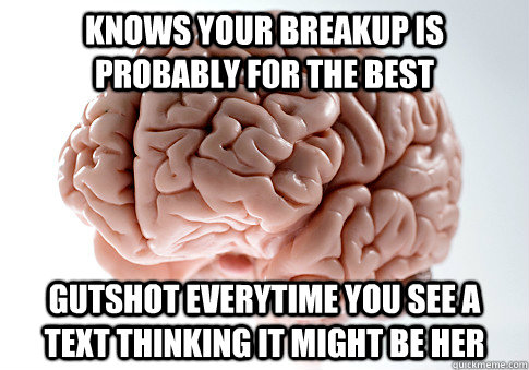 Knows your breakup is probably for the best gutshot everytime you see a text thinking it might be her - Knows your breakup is probably for the best gutshot everytime you see a text thinking it might be her  Scumbag Brain