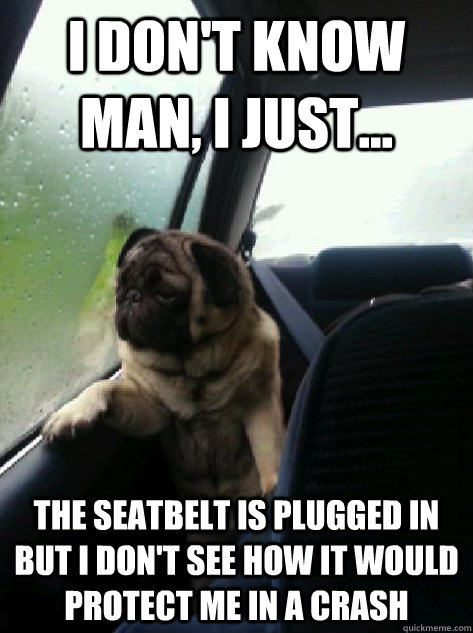 I don't know man, I just... The seatbelt is plugged in but I don't see how it would protect me in a crash - I don't know man, I just... The seatbelt is plugged in but I don't see how it would protect me in a crash  Introspective Pug