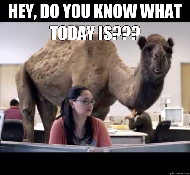 HEY, DO YOU KNOW WHAT TODAY IS???   hump day