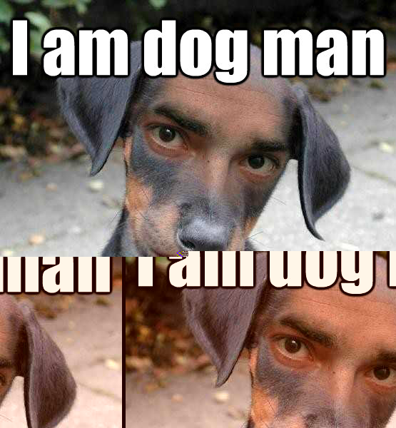 I am dog man Stare into my eyes..