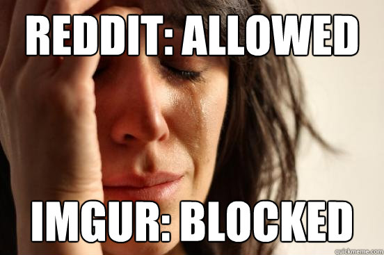 Reddit: Allowed imgur: Blocked - Reddit: Allowed imgur: Blocked  First World Problems