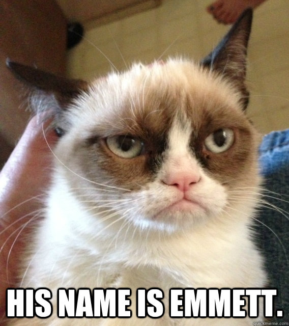 His name is Emmett. -  His name is Emmett.  dr seuss vs angry cat