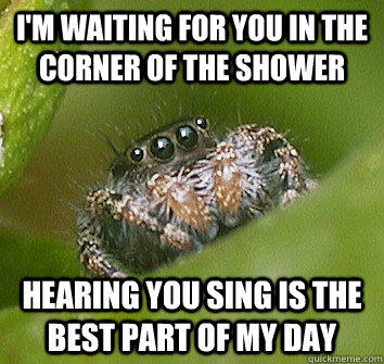 I'm waiting for you in the corner of the shower hearing you sing is the best part of my day  Misunderstood Spider
