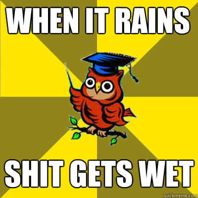 when it rains shit gets wet - when it rains shit gets wet  Observational Owl