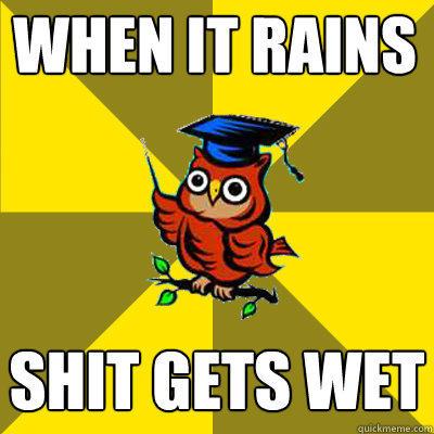 when it rains shit gets wet - when it rains shit gets wet  Observational Owl