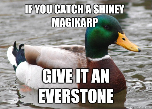 If you catch a shiney magikarp Give it an everstone - If you catch a shiney magikarp Give it an everstone  Actual Advice Mallard