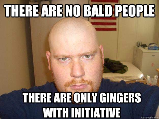 THERE Are no bald people There are only gingers with initiative - THERE Are no bald people There are only gingers with initiative  BALD GINGER