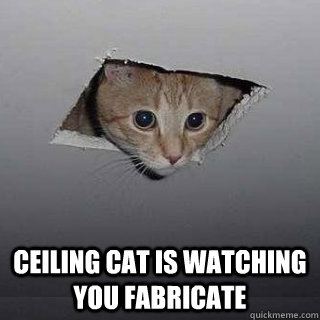 Ceiling cat is watching you fabricate -  Ceiling cat is watching you fabricate  Ceiling Cat
