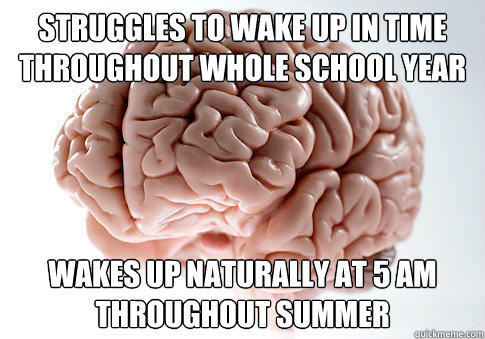 struggles to wake up in time throughout whole school year Wakes up naturally at 5 am throughout summer - struggles to wake up in time throughout whole school year Wakes up naturally at 5 am throughout summer  Scumbag Brain