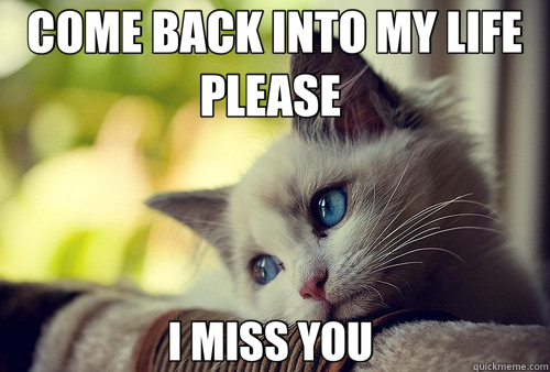 COME BACK INTO MY LIFE PLEASE  I MISS YOU  - COME BACK INTO MY LIFE PLEASE  I MISS YOU   First World Problems Cat
