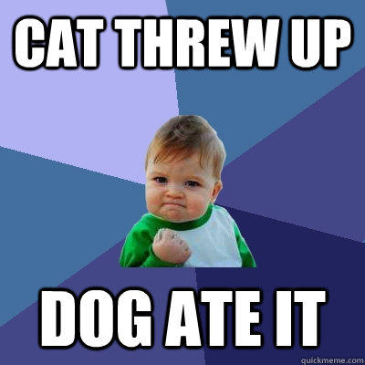 Cat threw up dog ate it - Cat threw up dog ate it  Success Kid
