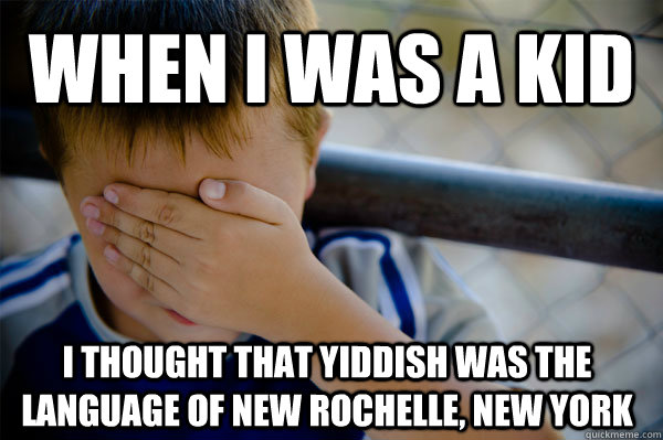 When I was a kid I thought that Yiddish was the language of New Rochelle, New York - When I was a kid I thought that Yiddish was the language of New Rochelle, New York  Misc