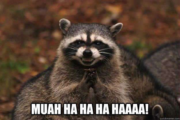 MUAH HA HA HA HAAAA! - MUAH HA HA HA HAAAA!  Evil Plotting Raccoon