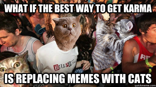 What if the best way to get karma is replacing memes with cats