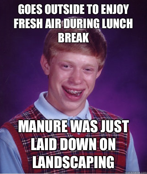 Goes outside to enjoy fresh air during lunch break Manure was just laid down on landscaping - Goes outside to enjoy fresh air during lunch break Manure was just laid down on landscaping  Bad Luck Brian