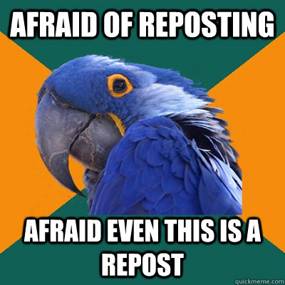 Afraid of reposting Afraid even this is a repost - Afraid of reposting Afraid even this is a repost  Paranoid Parrot