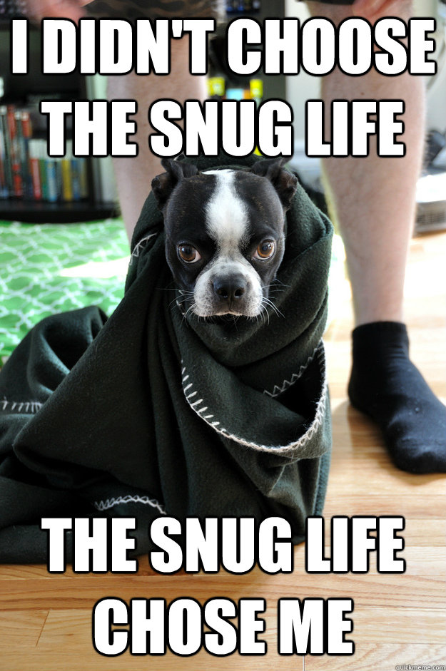 I didn't choose the snug life The snug life chose me - I didn't choose the snug life The snug life chose me  Misc