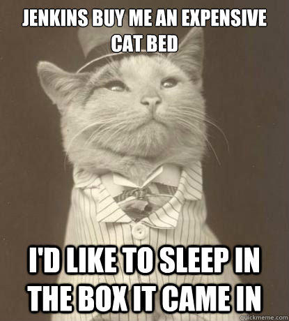 Jenkins buy me an expensive cat bed I'd like to sleep in the box it came in
