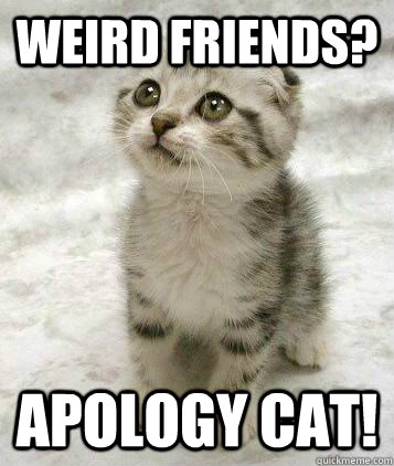 Weird friends? apology Cat!  Sad cat