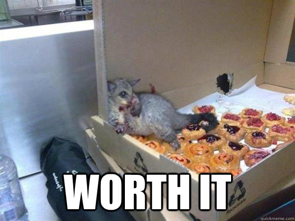 Worth It -  Worth It  10 Possum
