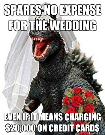 spares no expense for the wedding even if it means charging $20,000 on credit cards  Bridezilla
