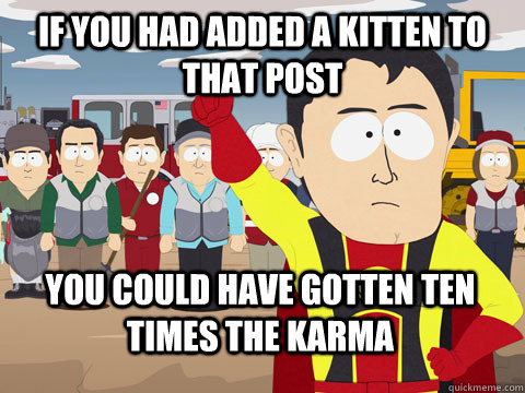 If you had added a kitten to that post you could have gotten ten times the karma - If you had added a kitten to that post you could have gotten ten times the karma  Captain Hindsight
