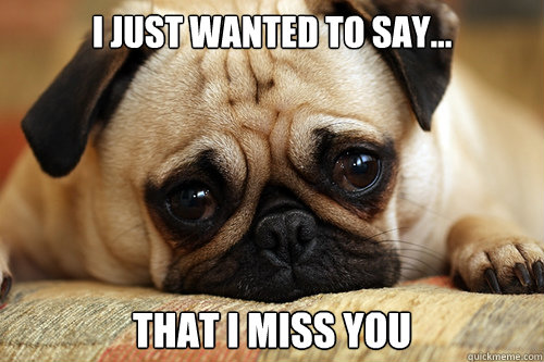 I Just Wanted To Say... That I Miss You  sad pug