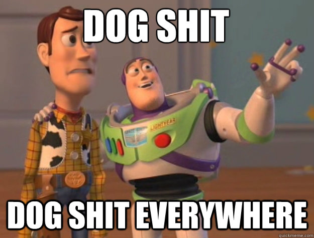 dog shit dog shit everywhere - dog shit dog shit everywhere  toystory everywhere