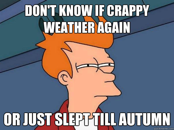 Don't know if crappy weather again or just slept till autumn - Don't know if crappy weather again or just slept till autumn  Futurama Fry