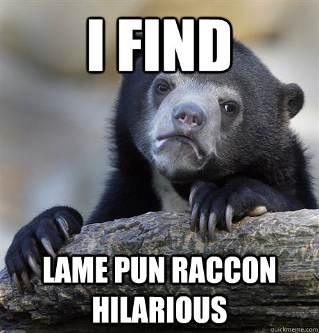 I find Lame pun raccon hilarious - I find Lame pun raccon hilarious  Confession Bear