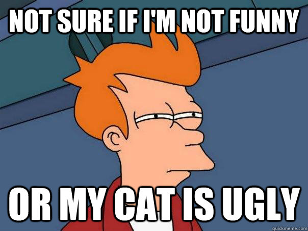 Not sure if I'm not funny Or my cat is ugly - Not sure if I'm not funny Or my cat is ugly  Futurama Fry