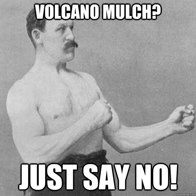 Volcano Mulch? just say no!  - Volcano Mulch? just say no!   overly manly man