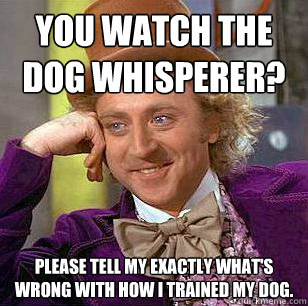 You watch The Dog Whisperer? Please tell my exactly what's wrong with how I trained my dog. - You watch The Dog Whisperer? Please tell my exactly what's wrong with how I trained my dog.  Condescending Wonka