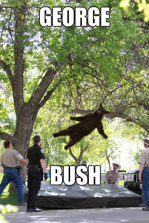 George Bush - George Bush  GeorgeBush