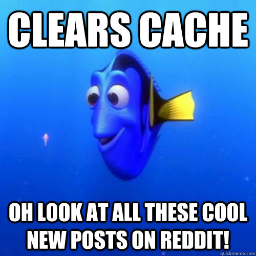 Clears cache Oh look at all these cool new posts on reddit! - Clears cache Oh look at all these cool new posts on reddit!  dory