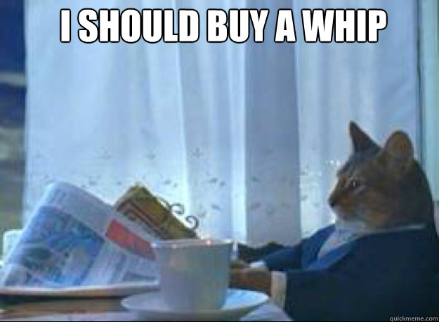 I should buy a whip  - I should buy a whip   I should buy a boat cat