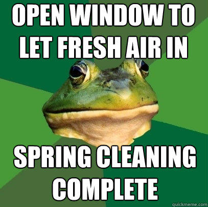 open window to let fresh air in spring cleaning complete - open window to let fresh air in spring cleaning complete  Foul Bachelor Frog