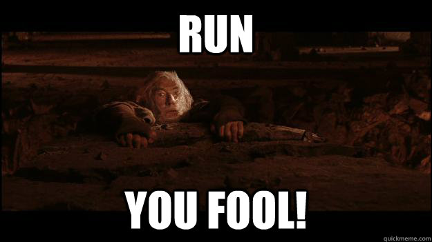 RUN YOU FOOL! - RUN YOU FOOL!  Gandalf